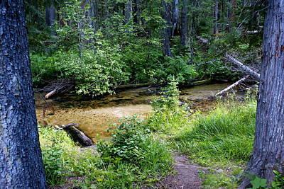 Photograph - Tacoma Creek 1 by Ben Upham III