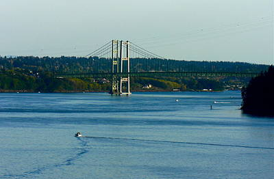Photograph - Tacoma Narrows Bridge by Jean Wright