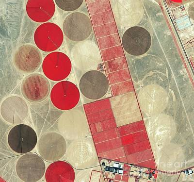 Photograph - Tadco Farm Saudi Arabia Satellite by GeoEye