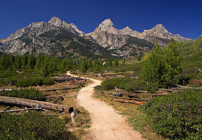 Photograph - Taggart Lake Trail In The Tetons by Daniel Woodrum