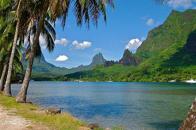 Photograph - Tahiti Splendor by Denise Mazzocco
