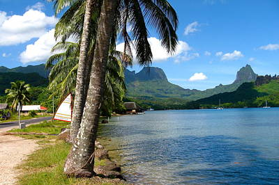 Photograph - Tahiti View by Denise Mazzocco