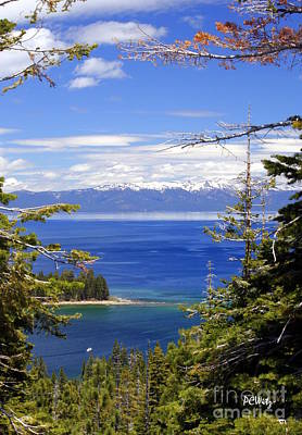 Photograph - Tahoe Blue by Patrick Witz