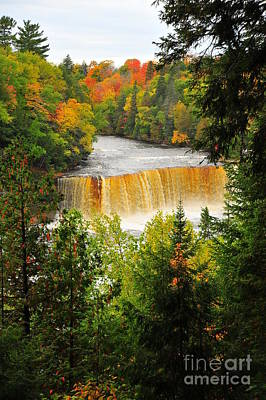 Tahquamenon Falls In Autumn Print by Terri Gostola
