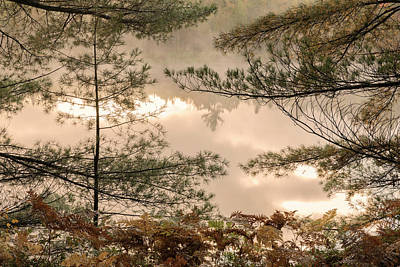 Northwoods Photograph - Tahquamenon River At Sunrise by Adam Jones