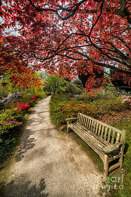 Benches Photograph - Take A Break by Adrian Evans