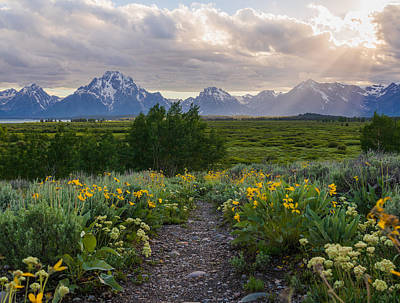 Teton Wall Art - Photograph - Take A Stroll by Kristopher Schoenleber