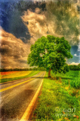 Country Lanes Digital Art - Take Me Home by Lois Bryan