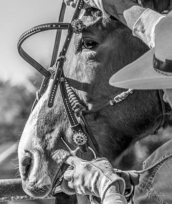 Western Art Photograph - Take The Bit by Julie Basile