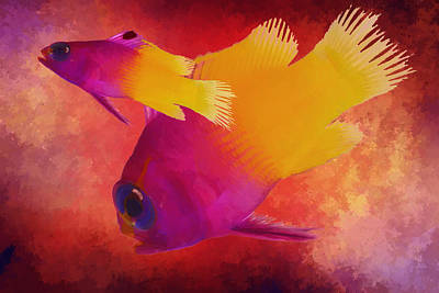 Tropical Fish Digital Art - Take The Plunge by Kandy Hurley