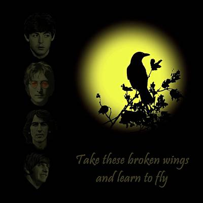 Take These Broken Wings And Learn To Fly Art Print