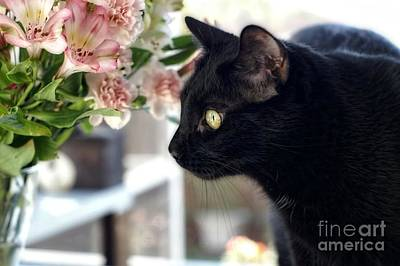 Photograph - Take Time To Smell The Flowers by Peggy Hughes