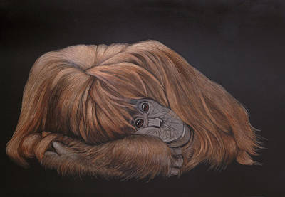 Orangutan Mixed Media - Taking Five by Kathleen McCarthy