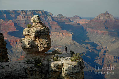 Art Print featuring the photograph Taking It All In by Nick  Boren
