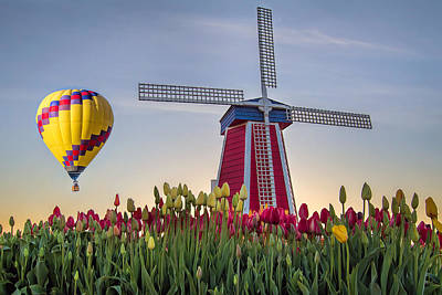Farmland Photograph - Taking Off At Tulip Field by David Gn