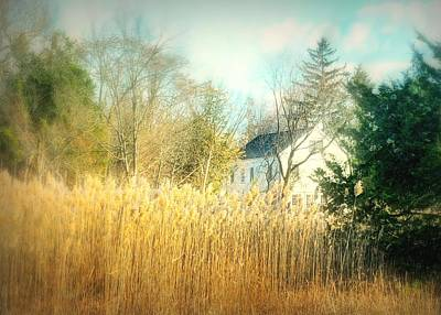 Photograph - Tall Grasses  by Diana Angstadt
