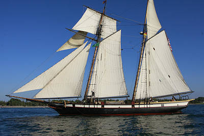 Photograph - Tall Ship Lynx by Bryan Davies