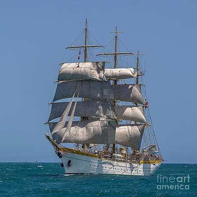 Photograph - Tall Ship Mircea by Pablo Avanzini