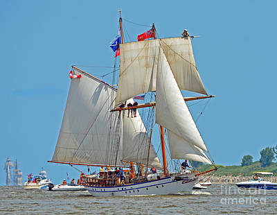 Photograph - Tall Ship Pathfinder by Rodney Campbell