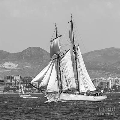 Photograph - Tall Ships' Races by Pablo Avanzini