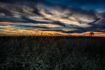 Prairie Sunset Wall Art - Photograph - Tallgrass Sunset by Larry Pacey