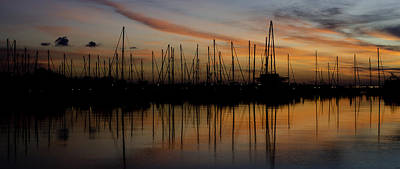 Dali Photograph - Tampa Bay At First Sunrise by Kevin  Whitworth