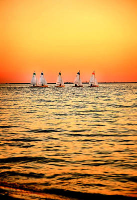 Photograph - Tampa Bay Sail Boats Davis Island Sunset by Rebecca Brittain