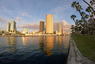 Photograph - Tampa From Plant Park by Daniel Woodrum