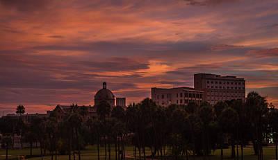 Animal Paintings David Stribbling Royalty Free Images - Tampa sunset Royalty-Free Image by Jane Luxton