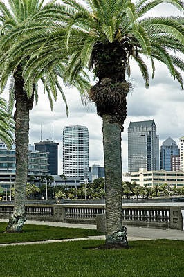 Tampa Skyline Photograph - Tampa Thru The Palms by Norman Johnson
