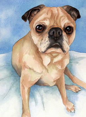 Tan And Black Pug Dog Print by Cherilynn Wood
