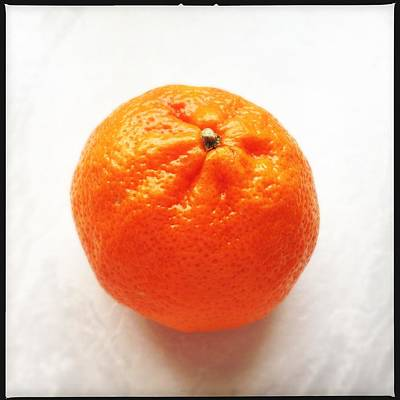 Bright Photograph - Tangerine by Matthias Hauser
