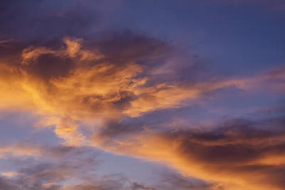 Photograph - Tangerine Swirl by Caitlyn  Grasso
