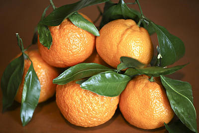 Oranges Art Print by Michael Riley