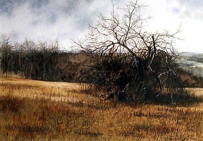 Painting - Tangled Wood by Tom Wooldridge