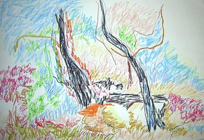 Drawing - Tanglewood by Esther Newman-Cohen