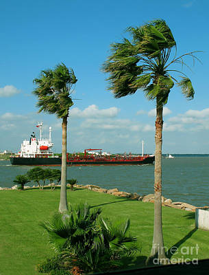 Photograph - Tanker In Houston Ship Channel by Connie Fox