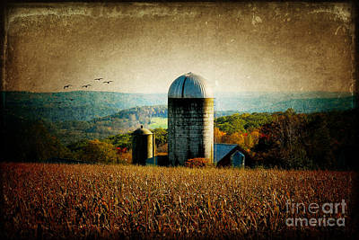 Tanner Hill Farm In The Fall Connecticut Usa Art Print by Sabine Jacobs