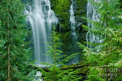 Pacific Northwest Waterfall Art Print