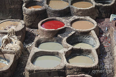 Photograph - Tannery In Fez by Patricia Hofmeester