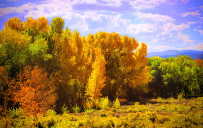 Photograph - Taos Autumn Trees by Ann Powell