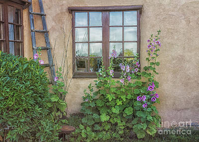 Photograph - Taos Garden At Dawn by Terry Rowe