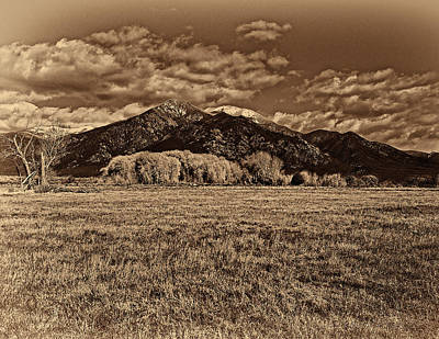 Digital Art - Taos Mountain In Platinum  by Charles Muhle