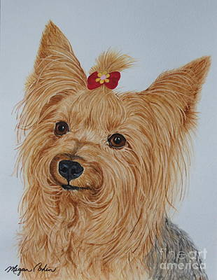 Dog Painting - Tara The Yorkie by Megan Cohen