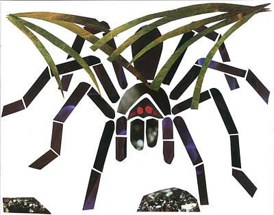 Invertebrates Mixed Media - Tarantula by Earl ContehMorgan