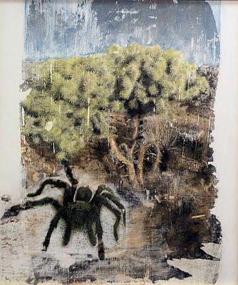 Tarantula Painting - Tarantula by Frederick Fulmer