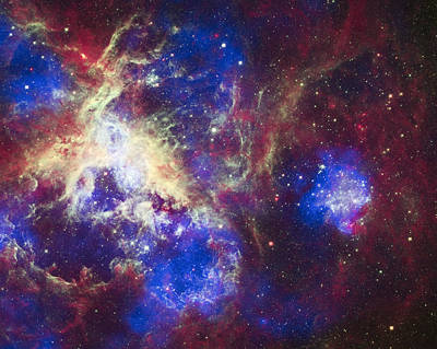 Science Fiction Royalty-Free and Rights-Managed Images - Tarantula Nebula by Adam Romanowicz