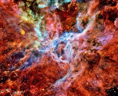 Photograph - Tarantula Nebula by Benjamin Yeager