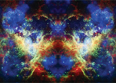 Tarantula Reflection 2 Art Print by Jennifer Rondinelli Reilly - Fine Art Photography