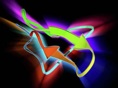 Toxin Photograph - Tarantula Toxin Molecule by Laguna Design